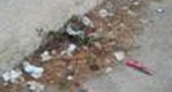 I cittadini segnalano: poca pulizia per le strade