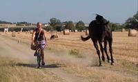 bici e cavallo