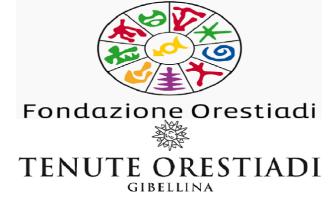 Gibellina: Tenute Orestiadi nel CdA della Fondazione Orestiadi