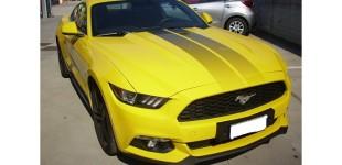 Ecco la Mustang: cavallo pazzo, leggenda automobilistica
