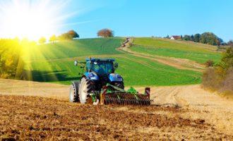 """Contrasto al lavoro nero in agricoltura, sindacati aderiscono alla """"Rete del lavoro agricolo di qualità"""""""