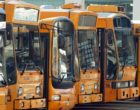 Salemi, ritorna il bus navetta per il trasporto urbano. Gratuito per alcune fasce