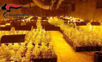 Poggioreale, maxi sequestro di marijuana. Due arresti