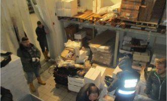 Maxi operazione della Guardia Costiera: Nel sequestro tonno rosso e pesce spada