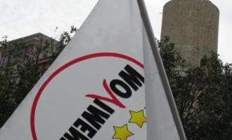 """Salemi, Il M5s scrive al Prefetto: """"Disinfestazione in tempi celeri. L'amministrazione è sorda!"""""""