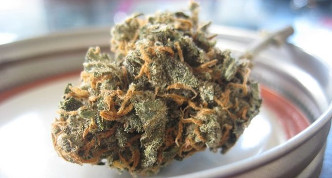 Cibo e cosmetici alla marijuana. La rivoluzione del mercato parte dalla California
