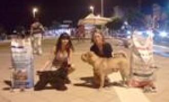 Gran Galà del Cane: successo per i partannesi