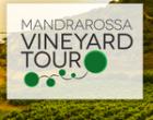 "Oggi al via il ""Mandrarossa Vineyard Tour"""