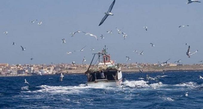 Consiglio Provinciale: riunione straordinaria sulla problematica dei pescherecci sequestrati