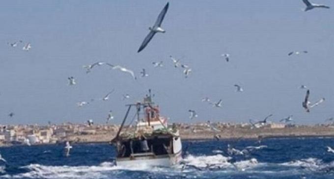 Attività di pesca nel mediterraneo: l'UE si assuma le proprie responsabilità. Dalla provincia proposta di un tavolo tecnico