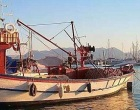 Liberato il motopeschereccio Flori: il compiacimento del Consiglio Provinciale e del Presidente Poma