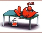 Alcamo: donazioni di sangue, è record in città