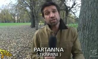 Dopo il servizo di Striscia: Il Partito Animalista Europeo denuncia la Polizia Municipale di Partanna