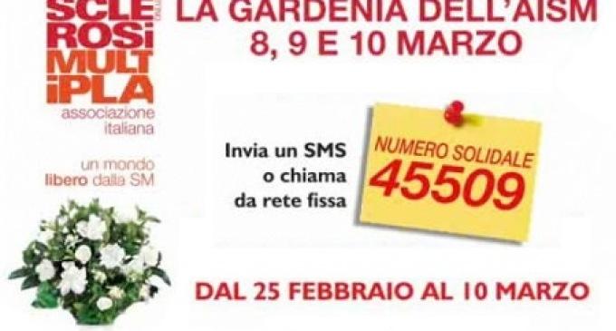 """In piazza per """"La Gardenia dell'AISM"""""""
