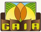 Gibellina: al via il progetto GAIA