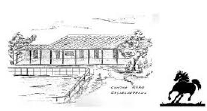A.I.A.S. onlus Castelvetrano: domani IX Giornata dell'Aquilone