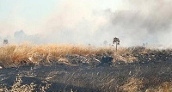 Castelvetrano: forte calo degli incendi grazie all'ordinanza sindacale sulla pulitura dei terreni