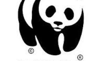 Trapani: il WWF internazionale approda alle isole Egadi