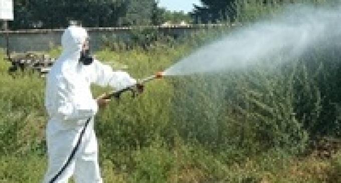 Santa Ninfa: comune paga ditta per servizio disinfestazione