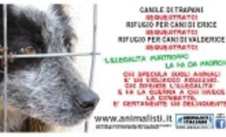 E' partita in Sicilia la nuova campagna di sensibilizzazione di Animalisti Italiani Onlus