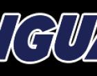 UCIIM: aperte le iscrizioni ai corsi in lingua inglese con certificazione EDI