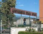 L'Università di Palermo riapre le immatricolazioni