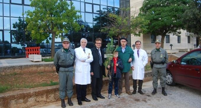 I Sindaci di Castelvetrano e Mazara del Vallo concordi nel piantare un albero per ogni nuovo nato