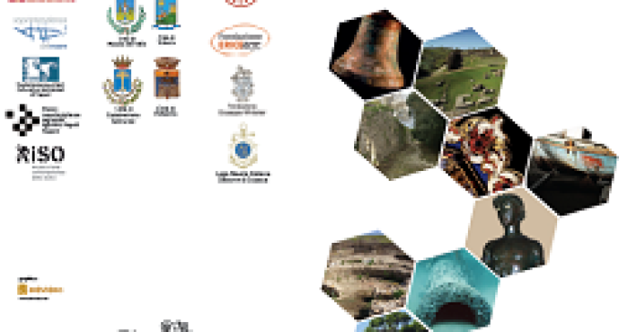 Tutte le attività organizzate da PAM nel corso del 2014