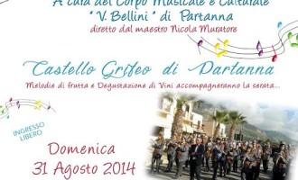 """Partanna: il Sindaco ricorda il """"Concerto d'Estate"""" di domenica sera"""