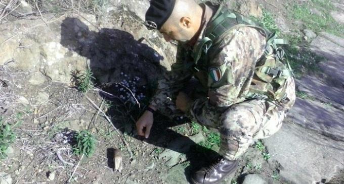 Esercito: ritrovato residuato bellico a Pantelleria