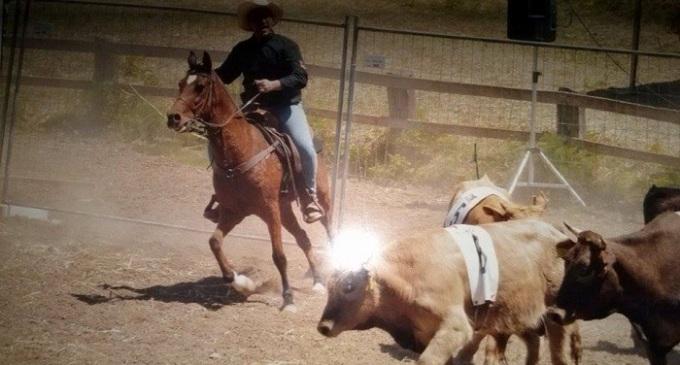 Al Belice Western Show vincono i cavalieri Bellini-Nocera
