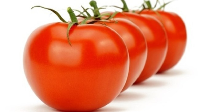 La Tomatina (Guerra di Pomodori)