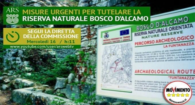Riserva Bosco d'Alcamo: mercoledì audizione in commissione Ambiente e Territorio all'Ars