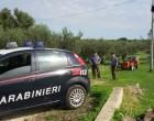 Carabinieri, Nil e Nas: sanzione da 8 mila euro per due lavoratori in nero a Campobello