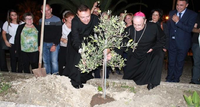 A Poggioreale un albero di ulivo in ricordo della Visita pastorale