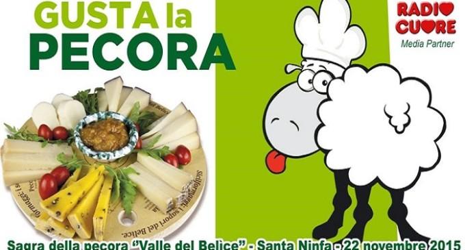 """Domenica 22 novembre """"Gusta la pecora"""" a Santa Ninfa"""