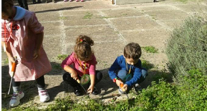 Avviato laboratorio didattico alla scuola dell'infanzia del secondo circolo di Castelvetrano