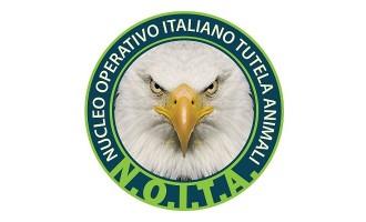 "Nasce a Trapani il ""Nucleo Operativo Italiano Tutela Animali"""