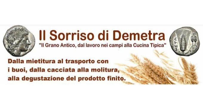 Il sorriso di Demetra – il grano antico, dal lavoro nei campi alla cucina tipica