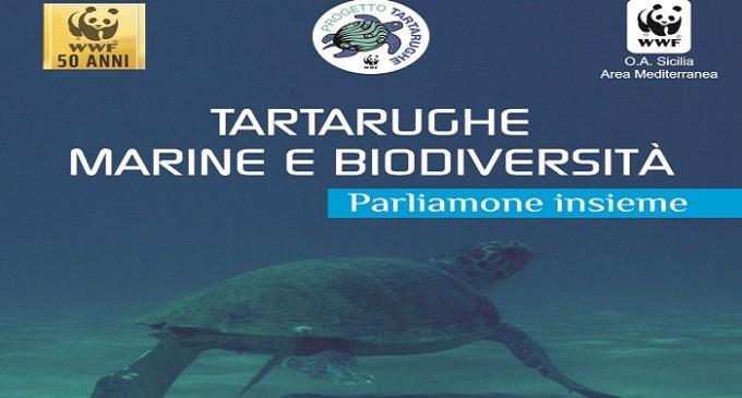 """Triscina: domani incontro dal titolo """"Tartarughe marine e biodiversità. Parliamone insieme"""""""