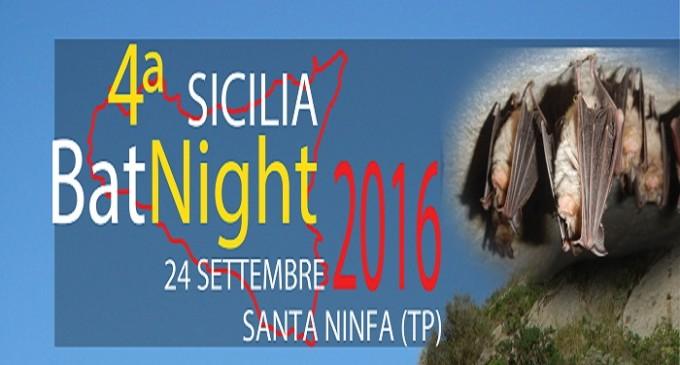 Domani Sicilia Bat Night, un'avventura nel mondo segreto dei chirotteri