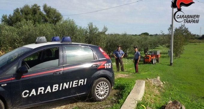 Castelvetrano: ruba olive in un terreno confiscato, arrestato