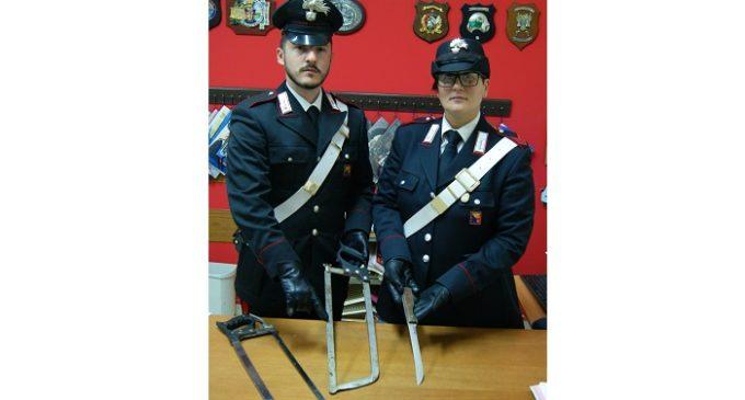 Salaparuta: Carabinieri denunciano tre soggetti per macellazione clandestina