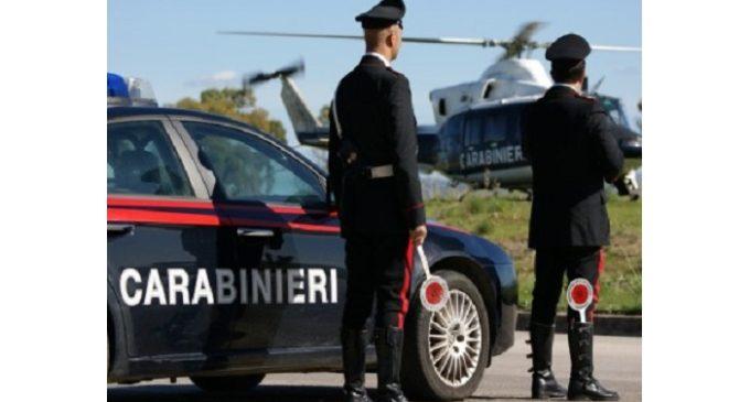 Marsala: controlli straordinari antidroga con elicottero e cani, un arresto e due denunce