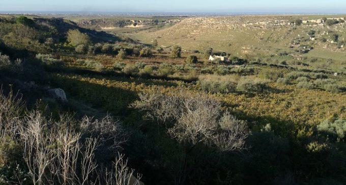 Prima Archeologia del Mediterraneo: continua il progetto di ricerca sul fiume Mazaro