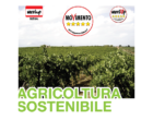 Partanna: sabato incontro sull'Agricoltura Sostenibile 2017-2020