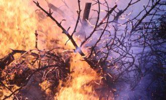Quei casuali incendi vicino i terreni confiscati alla Mafia
