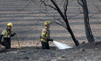 Pompieri volontari appiccavano incendi per percepire compensi