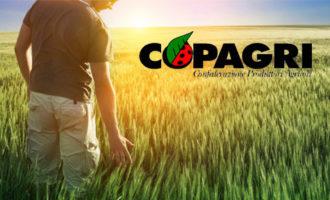 """""""Stato di Calamita naturale per la provincia di Trapani"""", la richiesta della Copagri"""