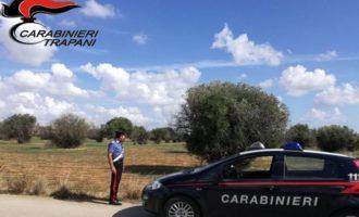 Mazara, scoperto altro furto di olive. Arrestati padre e figlio